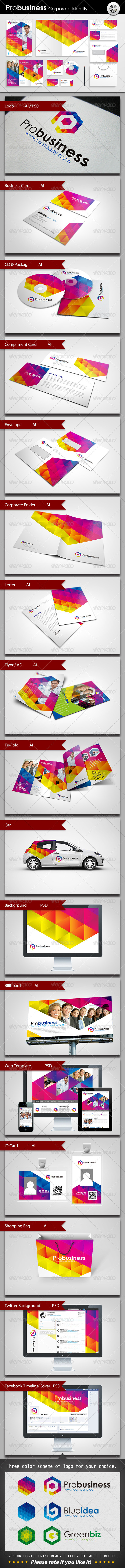 GraphicRiver ProBusiness Corporate Identity 3103138