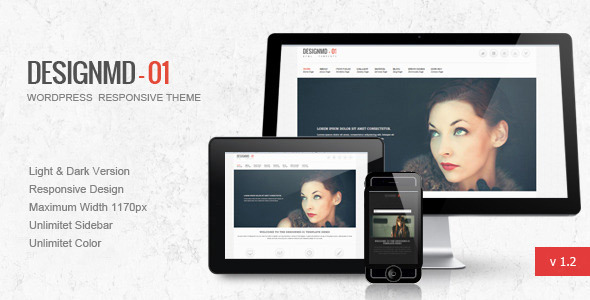 ThemeForest Designmd 01 Responsive Wordpress Theme 2862713