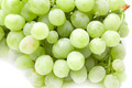 ripe juicy green grapes - PhotoDune Item for Sale