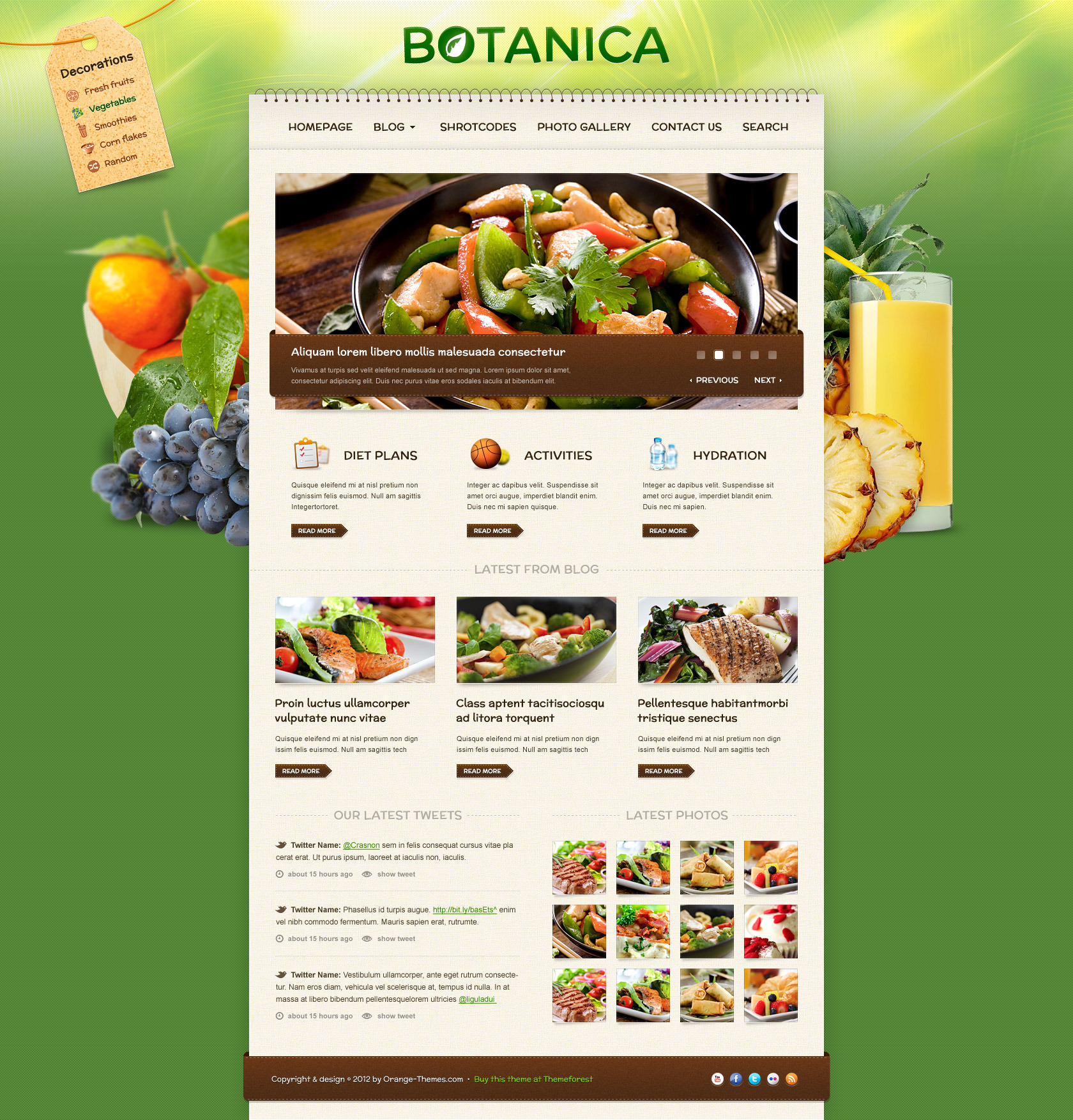 Botanica - Diet & Fitness Wordpress Theme