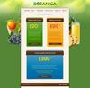 Botanica-screenshot-05-pricing-tables.__thumbnail