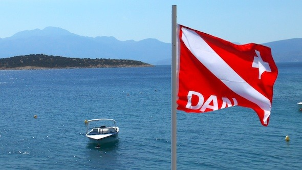 Divers Alert Network DAN Flag Waving
