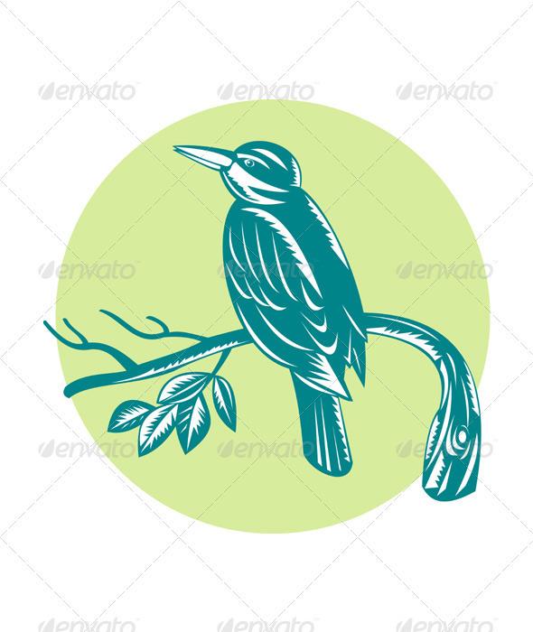 Kingfisher Perching On Branch Woodcut  GraphicRiver - Vectors -  Characters  Animals 3194944