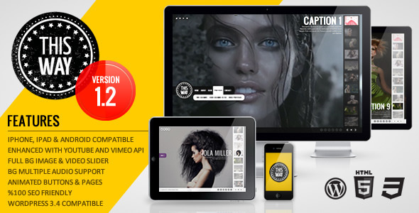 ThemeForest This Way WP Full Video Image Background with Audio 943634