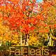 Fall Season Bundle - VideoHive Item for Sale
