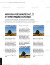 10_page9.__thumbnail