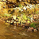 Flowing River - VideoHive Item for Sale