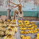 bananas on marketplace  - PhotoDune Item for Sale