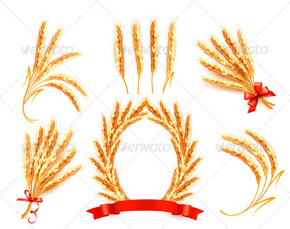 Ears of wheat with label
