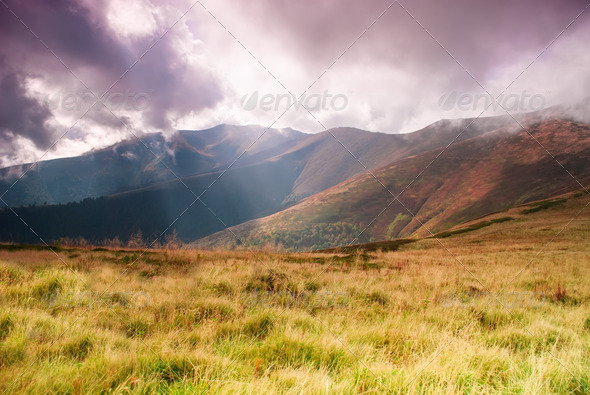 Landscape with sunrays - Stock Photo - Images