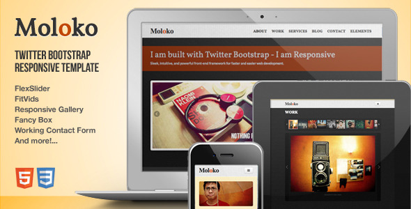 Moloko - Responsive One Page Html5 Template