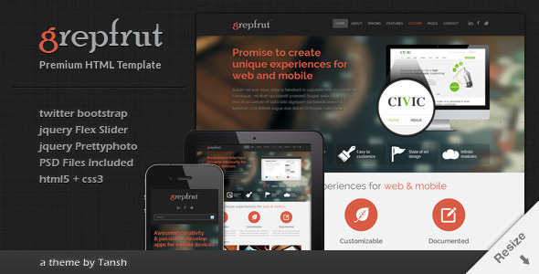 Grepfrut Responsive Software HTML Template - Software Technology