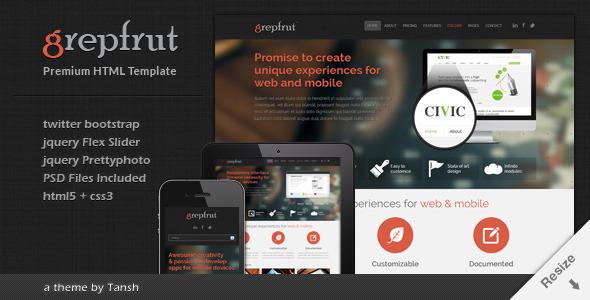 ThemeForest Grepfrut Responsive Software HTML Template 3215883