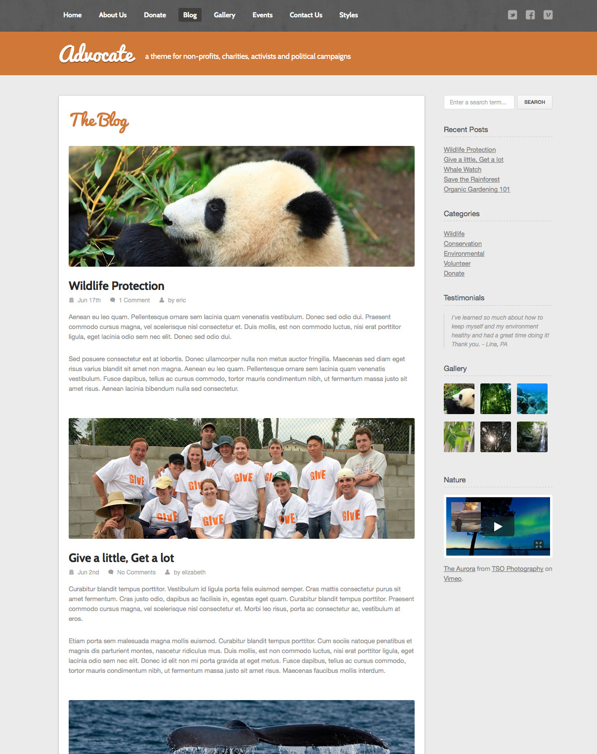Advocate - A Nonprofit Responsive HTML Template  - Blog - The blog can be used to display images or mini-sliders along with your blog posts.