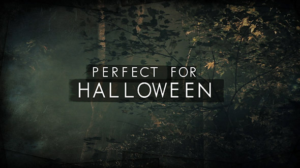 After Effects Project - VideoHive Dark Woods and Text 3225451