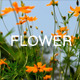 Yellow Flowers 1 - VideoHive Item for Sale
