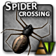 Spider Crossing - ActiveDen Item for Sale
