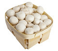 Champignon mushrooms in a wooden basket on white - PhotoDune Item for Sale
