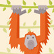 Orang Utan - GraphicRiver Item for Sale