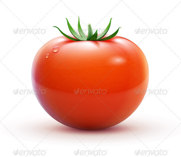 Red fresh tomato - Food Objects