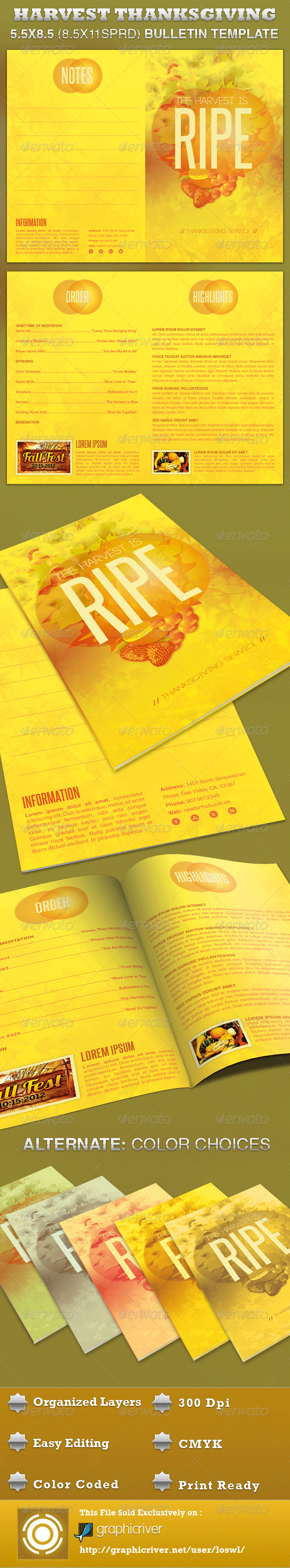 Church Harvest Thanksgiving Service Bulletin - Informational Brochures
