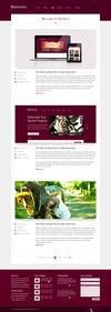 10.blog-v5_full-width.__thumbnail