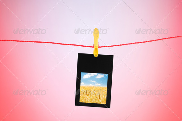 Picture frames with nature photos - Stock Photo - Images