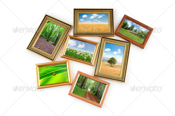 Nature photos in picture frames - Stock Photo - Images