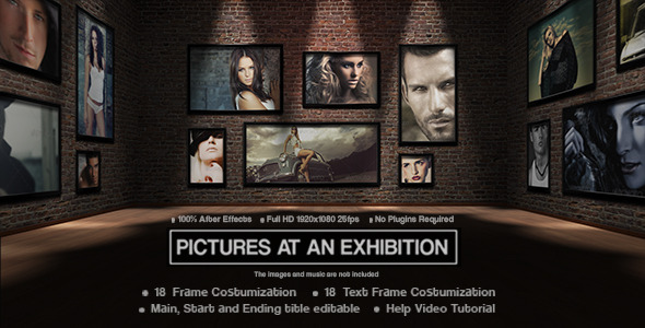 VideoHive Picture at an Exhibition 3271104