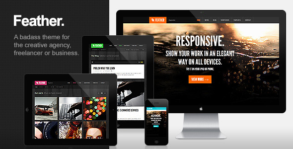 ThemeForest Feather Responsive Portfolio WordPress Theme 2874150