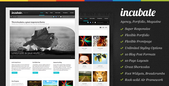 ThemeForest Incubate Responsive Agency & Portfolio WordPress Theme 2750535