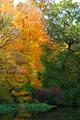 Fall River Bank - PhotoDune Item for Sale