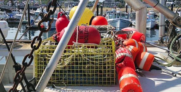 Buoys And Boat