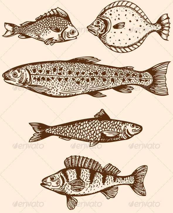 GraphicRiver Vintage Fish 3287858