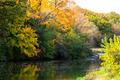 River Fall Autumn Wilderness Landscape - PhotoDune Item for Sale