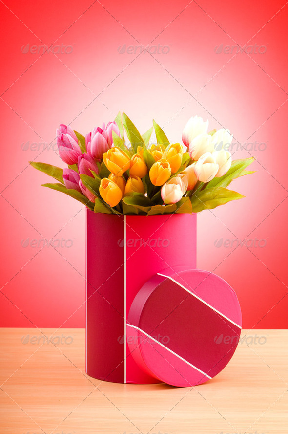 Giftbox and tulips against gradient background - Stock Photo - Images