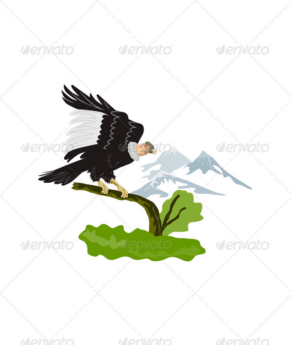 GraphicRiver Vulture Buzzard Bird Perch on Branch 3310384