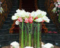 Bouquet of white lily and red rose - PhotoDune Item for Sale