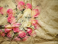 Bouquet of rose - PhotoDune Item for Sale