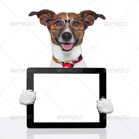 PhotoDune business dog tablet pc ebook touch pad 3317069