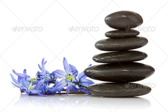 Black Stones And Blue Flowers - Stock Photo - Images