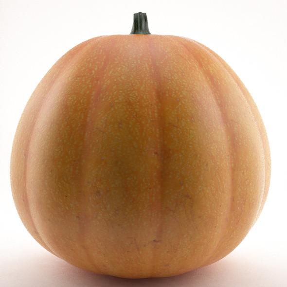 3DOcean Pumpkin 3319792