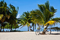 Old Bicycle on Caribbean Beach - PhotoDune Item for Sale