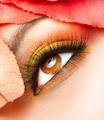Autumn Makeup. Fall Make-up Closeup - PhotoDune Item for Sale