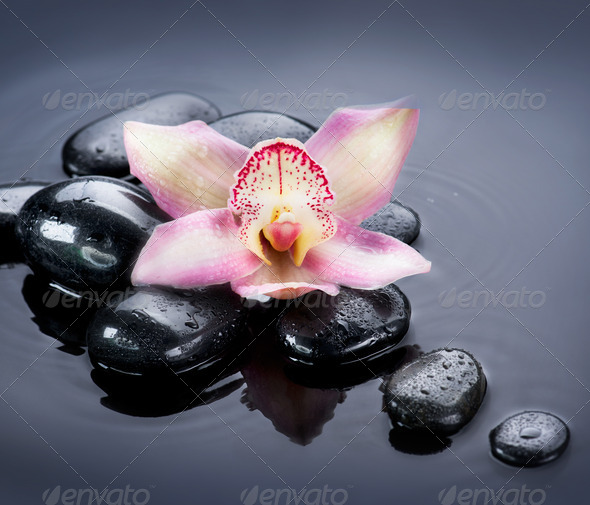 Spa Zen Stones - Stock Photo - Images