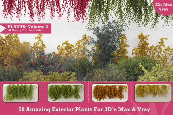 3DOcean 50 Exterior Plants For 3D s Max & Vray Volume 2 3325359