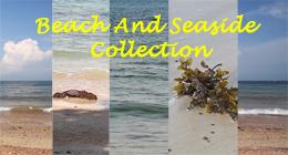 Beach and Seaside