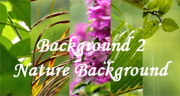 Background2 - Nature Background