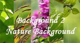 Background2 - Nature Background
