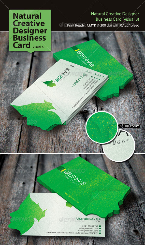 GraphicRiver Natural Creative Designer Business Card Visual 5 3326875